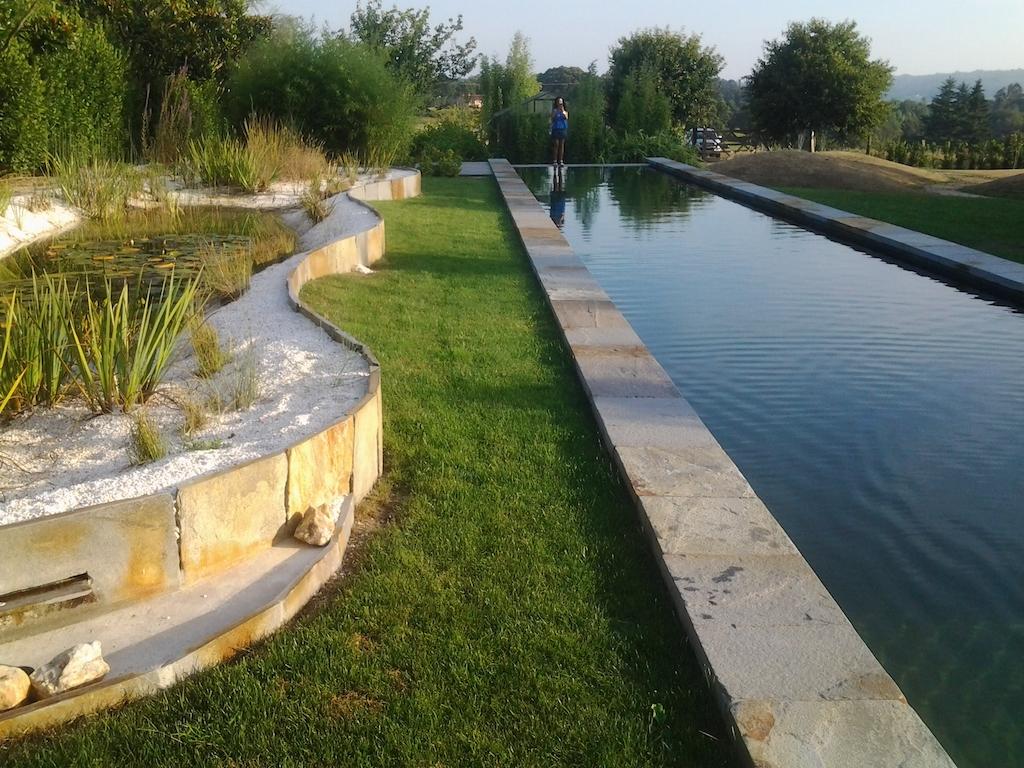 Construccion de piscinas naturales mayli jardines y for Construccion de piscinas naturales